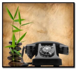 contact bamboo